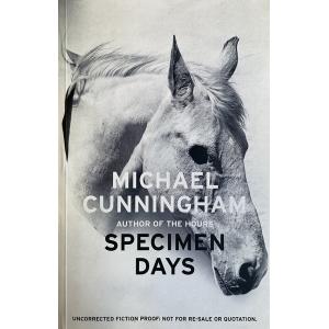 Майкъл Кънингам | Дни образци