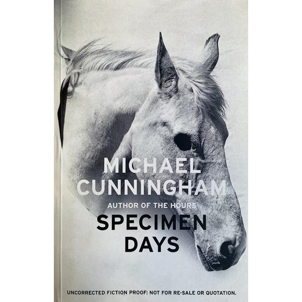Майкъл Кънингам | Дни образци 1