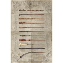 Poster Harry Potter The Wand Chooses
