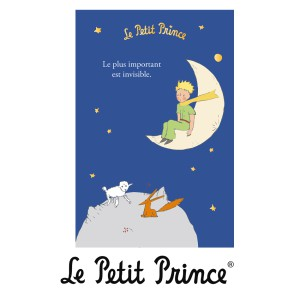 CPPR474 Gift Card - Le Petit Prince Мoon