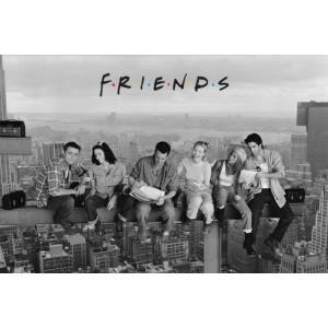 PP30742 Poster 181 Friends - Skyscraper постер
