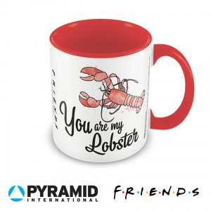 MGC25461 Mug - Friends You Are My Lobster