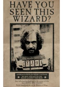 "Плакат ""Виждали ли сте този магьосник?"""