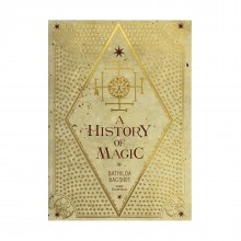 History of Magic Journal Harry Potter