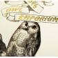 Картичка Емпориум за сови 3
