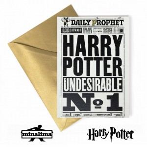 HPCARD11 Harry Potter Giftcard - Harry Potter Undesirable N1