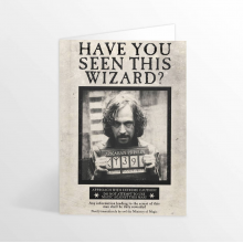 Have You Seen This Wizard Lenticular Card Harry Potter