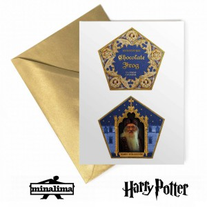HPCARD49L Harry Potter Lenticular Giftcard - Chocolate Frog Packaging