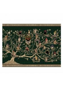 Постер на Семейство Блек Хари Потър
