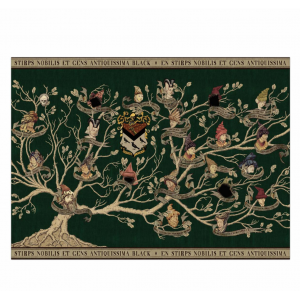 The Black Family Tapestry Poster Harry Potter