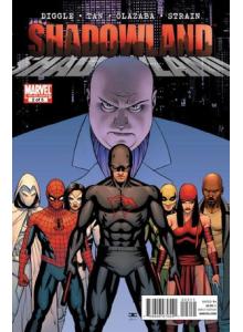 Comics 2010-10 Shadowland 2