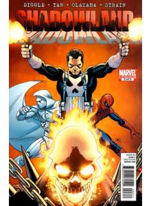 Comics 2010-11 Shadowland 3