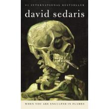 David Sedaris | When You Are Engulfed In Flames