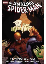 The Amazing Spider-Man: Flying Blind