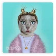 Поздравителна картичка Pets Rock Miley Cyrus