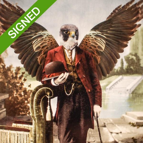 Adrian Higgins  - 21 x 30 Подписан Принт Adrian Higgins Watch the Birdie 1