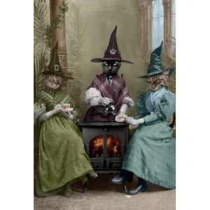 70 x 50 Подписан Принт Adrian Higgins Witches Brew