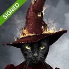 70 x 50 Подписан Принт Adrian Higgins Cat A Dark Turn of Mind