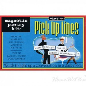 Magnetic poetry kit PICK UP LINES
