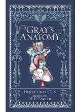 Henry Gray | Gray's anatomy