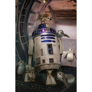 Плакат Star Wars The Last Jedi R2D2 and Porgs