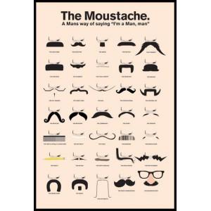 Плакат MOUSTACHES