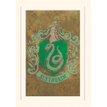 Принт Harry Potter Slytherin