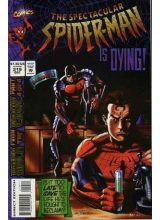 Комикс 1994-12 The Spectacular Spider-Man 219